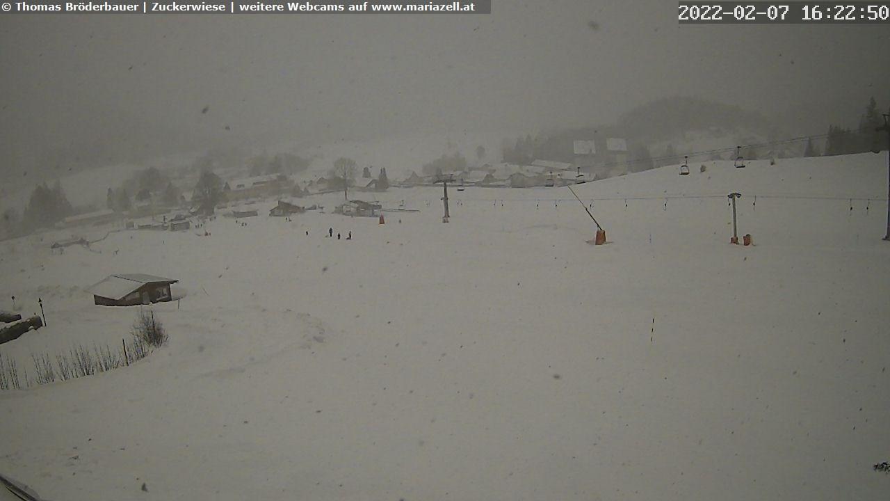 Bürgeralpe Mariazell – Zuckerwiese